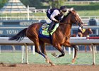 Authentic works at Santa Anita, 10-17-20