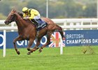 Tom Marquand winning The Qipco British Champion Stakes on Addeybb