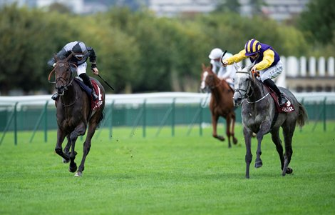 Princess Zoe Aims for Group 1 Double in Prix Royal-Oak