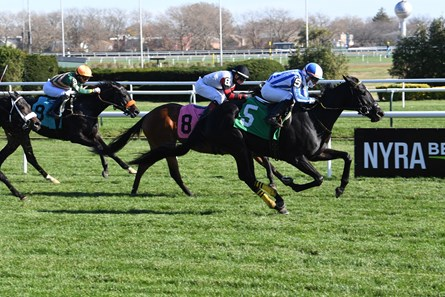 Athena Dancer wins maiden special weight Friday, November 20, 2020 at Aqueduct