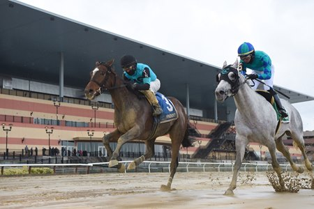 Brooklyn Strong (outside) wins the 2020 Remsen Stakes at Aqueduct Racetrack