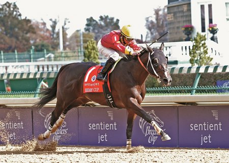 Big Drama wins the 2010 Breeders' Cup Sprint at Churchill Downs