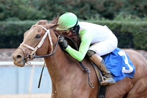 Getridofwhatailesu wins the Pippin Stakes at Oaklawn Park