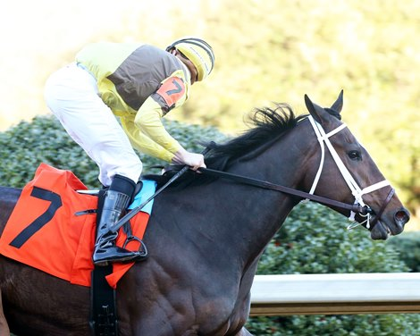 Caddo River Proves Rising Derby Threat in Smarty Jones