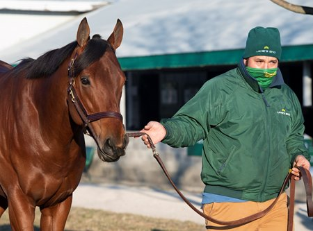 Turned Aside at the Keeneland January Sale