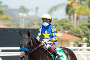Freedom Fighter returns from his maiden win last summer at Del Mar