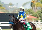 Freedom Fighter - Maiden Win, Del Mar, August 1, 2020