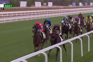 Neom Turf Cup at King Abdulaziz Racetrack