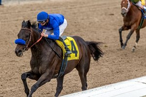 Maxfield wins the Mineshaft Stakes at Fair Grounds Race Course