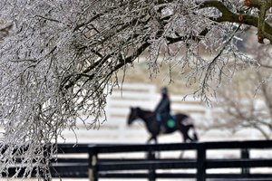February 12, 2021: Horse and rider heading back to the barn at an ice covered Keeneland