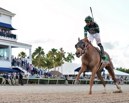 Known Agenda wins the Florida Derby at Gulfstream Park