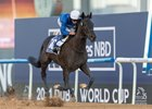 Rebel's Romance wins the UAE Derby at Meydan