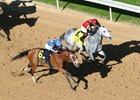 By My Standards wins the Oaklawn Mile Stakes Saturday, April 10, 2021 at Oaklawn Park