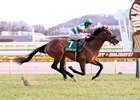 Efforia wins the Kyodo News Hai Tokinominoru Kinen (G3) at Tokyo Racecourse