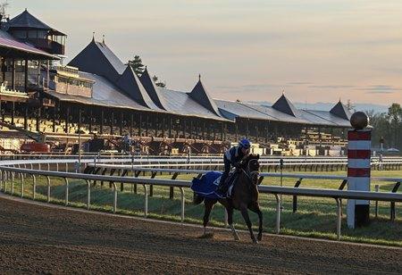 A horse trains at Saratoga Race Course