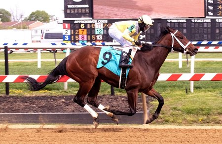 Edie Meeny Miny Mo breaks her maiden at Pimlico Race Course