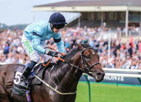 Royal Patronage, Luxembourg Win European KY Derby Preps